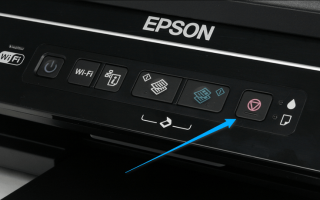 Сброс уровня чернил Epson (L210, L800, L110, L355, L100, L300, L200, L350)
